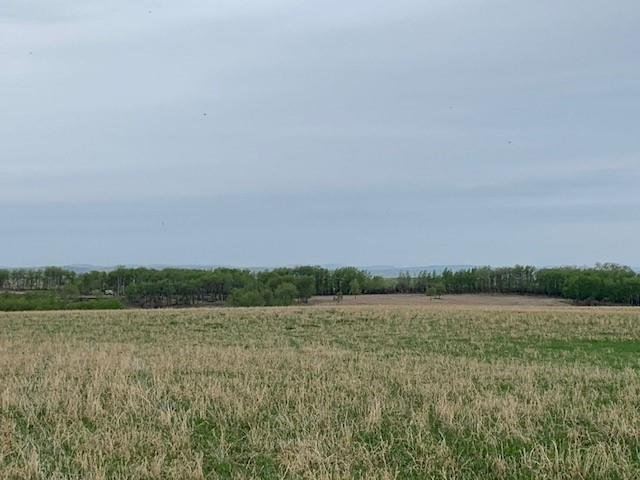 Main Photo: TOWNSHIP ROAD 574 in Rural Rocky View County: Rural Rocky View MD Land for sale : MLS®# C4297165