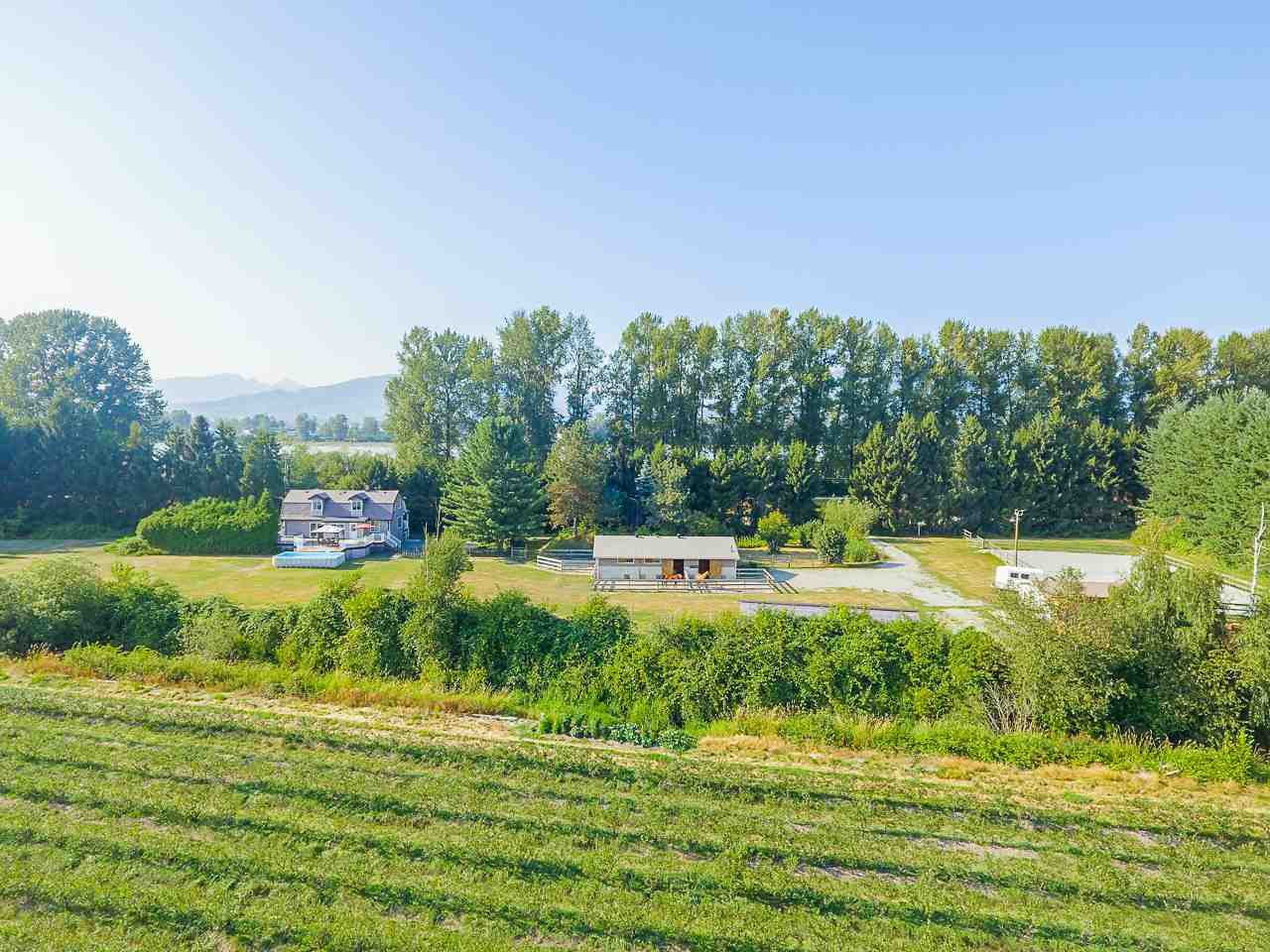 Photo 6: Photos: 17236 KENNEDY Road in Pitt Meadows: West Meadows House for sale : MLS®# R2395279