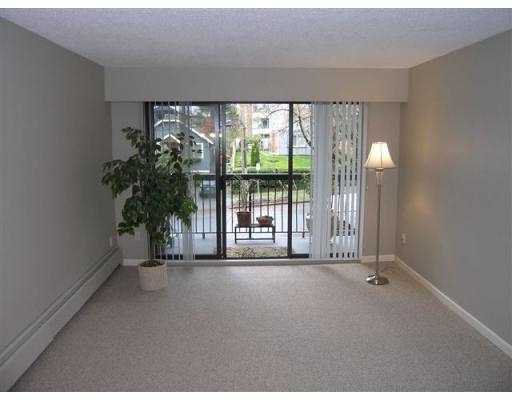 Photo 4: Photos: 209 5715 Jersey Avenue in Burnaby: Central Park BS Condo for sale (Burnaby South)  : MLS®# V921450