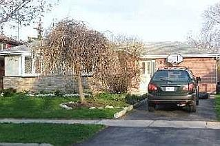 Main Photo:  in TORONTO: Freehold for sale : MLS®# E1613956