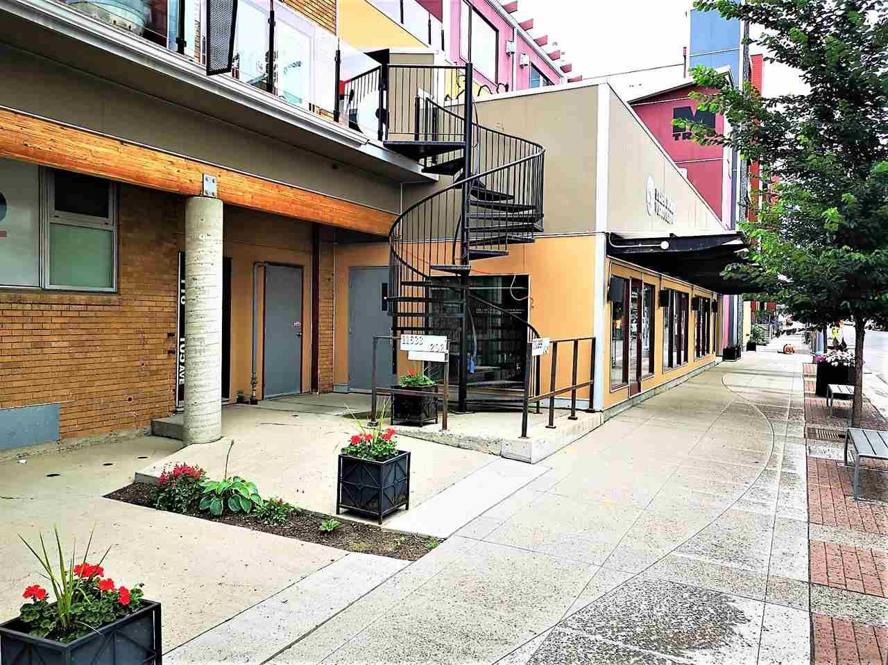 Main Photo: 210 11633 105 Avenue in Edmonton: Zone 08 Condo for sale : MLS®# E4167008