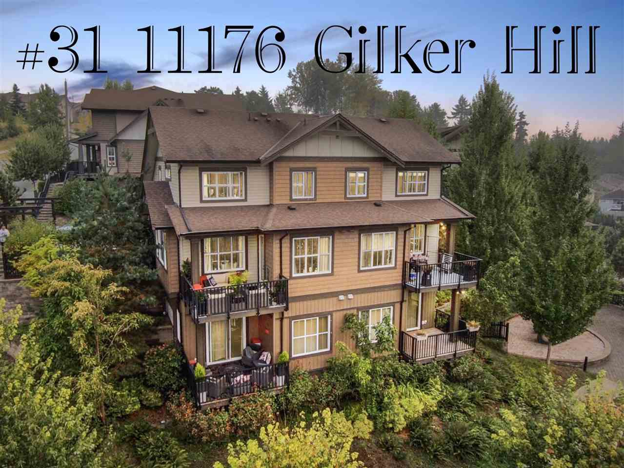 "Main Photo: 31 11176 GILKER HILL Road in Maple Ridge: Cottonwood MR Townhouse for sale in ""Bluetree"" : MLS®# R2501514"