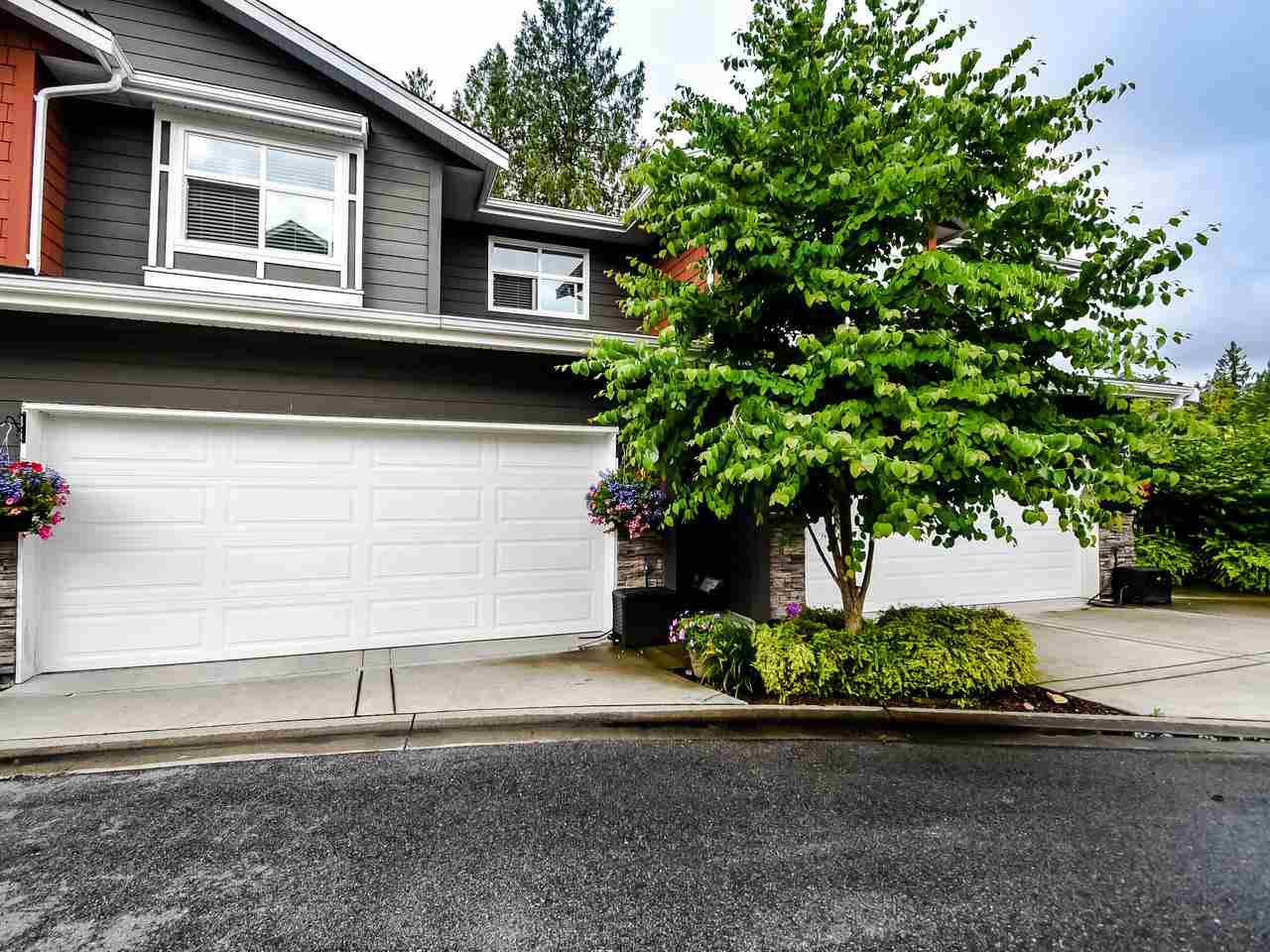"Main Photo: 31 11461 236 Street in Maple Ridge: Cottonwood MR Townhouse for sale in ""2 BIRDS"" : MLS®# R2470366"