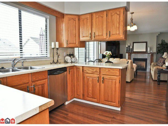 """Photo 4: Photos: 941 164 ST in Surrey: King George Corridor House for sale in """"McNally Creek"""" (South Surrey White Rock)  : MLS®# F1118797"""