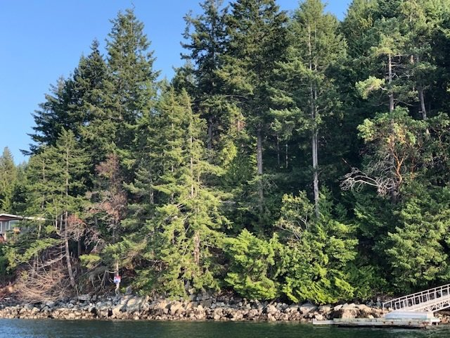 """Photo 2: Photos: 4147 FRANCIS PENINSULA Road in Madeira Park: Pender Harbour Egmont Land for sale in """"BEAVER ISLAND"""" (Sunshine Coast)  : MLS®# R2393294"""