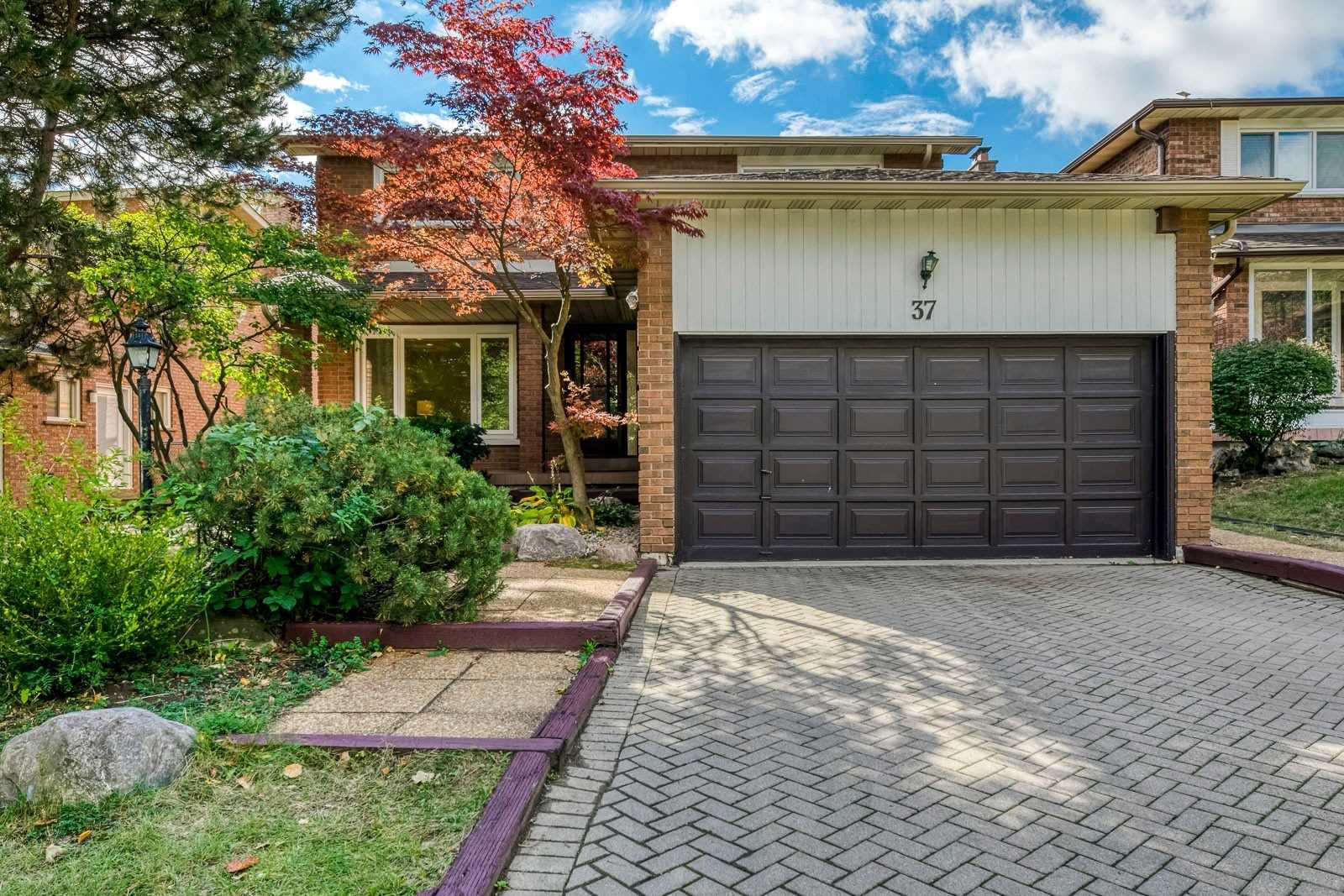Main Photo: 37 Sycamore Dr in Markham: Aileen-Willowbrook Freehold for sale : MLS®# N4933525