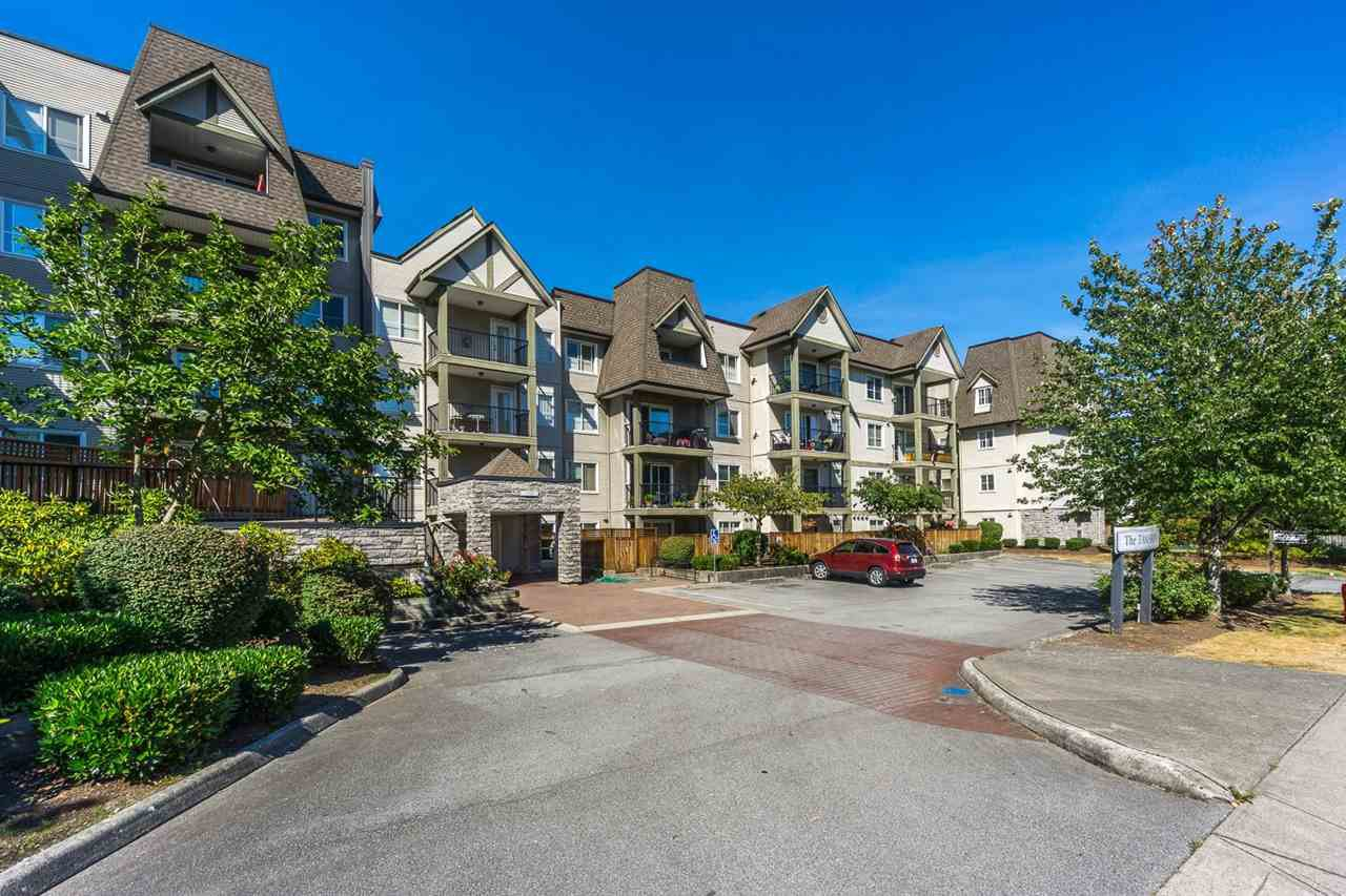 """Main Photo: 417 12083 92A Avenue in Surrey: Queen Mary Park Surrey Condo for sale in """"The Tamaron"""" : MLS®# R2394092"""