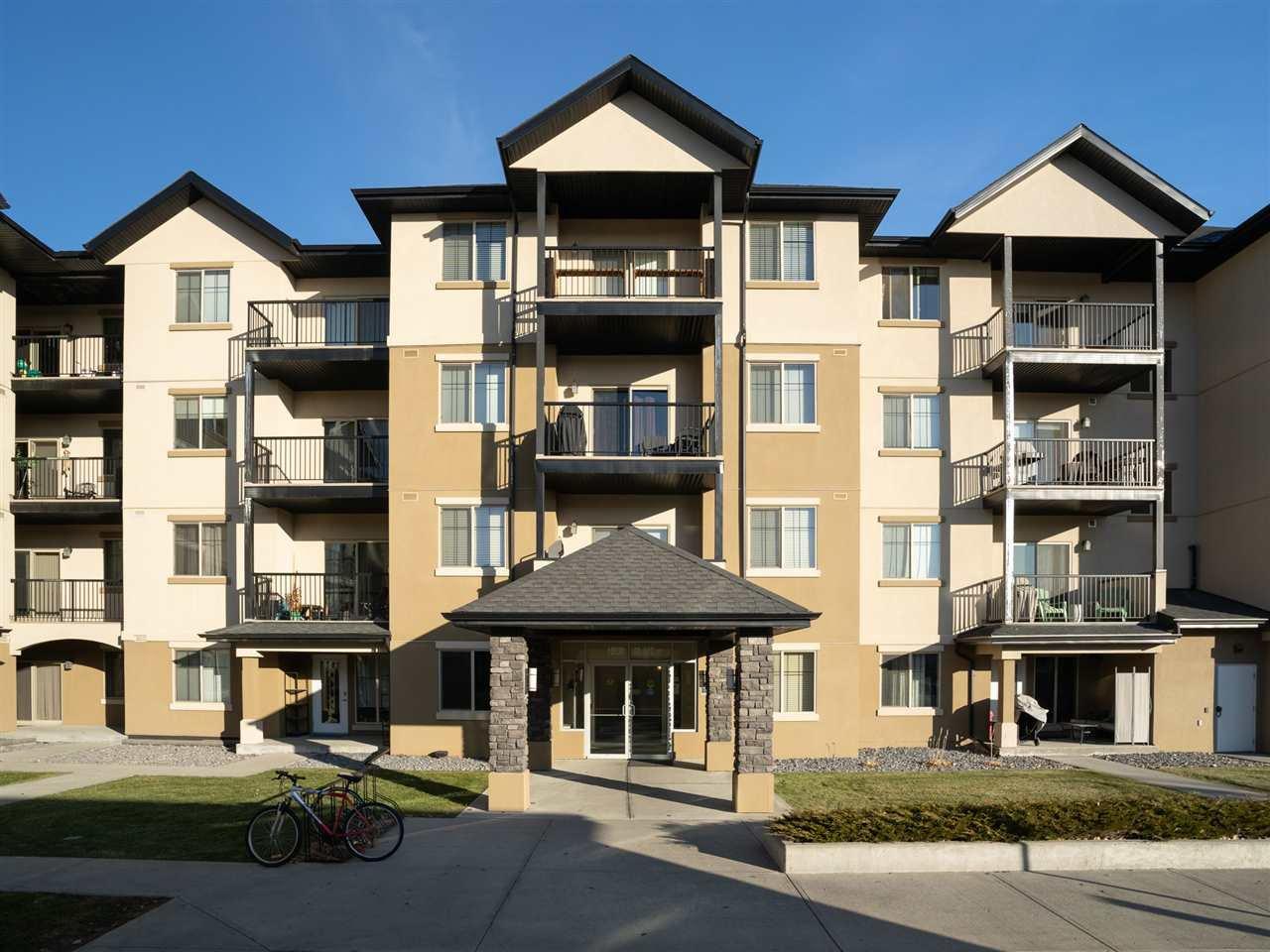 Main Photo: 102 10530 56 Avenue in Edmonton: Zone 15 Condo for sale : MLS®# E4179173