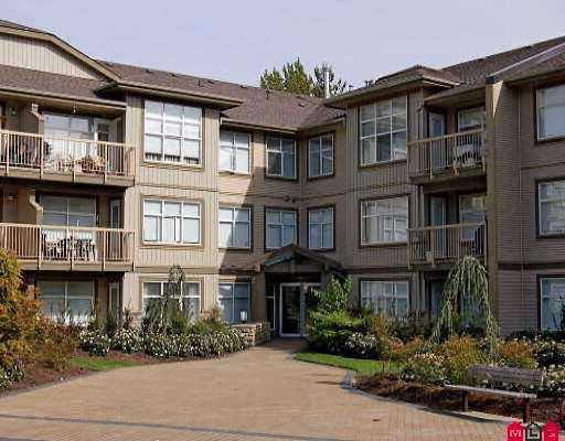 "Main Photo: 104 14885 105TH Ave in Surrey: Guildford Condo for sale in ""Reviva"" (North Surrey)  : MLS®# F2708346"