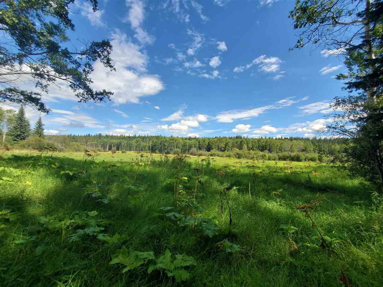 Main Photo: DL 2144 NAZKO Road in Quesnel: Bouchie Lake Land for sale (Quesnel (Zone 28))  : MLS®# R2486314