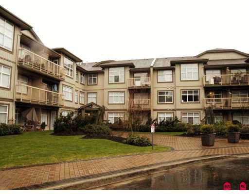 "Main Photo: 14885 105TH Ave in Surrey: Guildford Condo for sale in ""REVIVA"" (North Surrey)  : MLS®# F2705862"