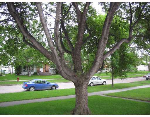 Photo 8: Photos: 687 WATERLOO Street in WINNIPEG: River Heights / Tuxedo / Linden Woods Single Family Detached for sale (South Winnipeg)  : MLS®# 2710072