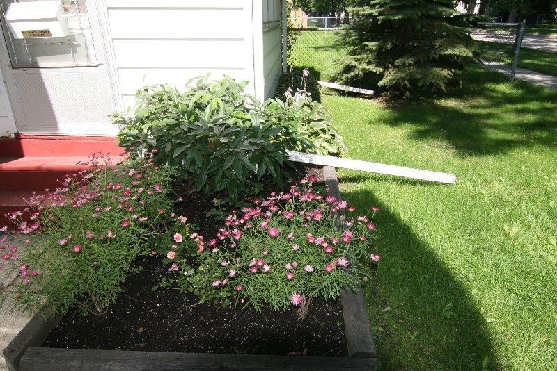 Photo 3: Photos: 956 Ashburn St./West End in Winnipeg: West End / Wolseley Single Family Detached for sale (West Winnipeg)  : MLS®# 2915096