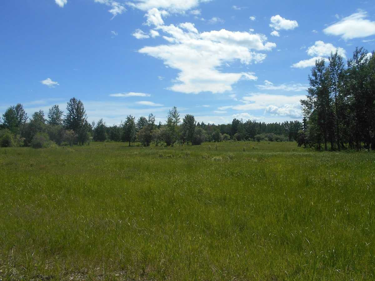 Main Photo: Twp. 474 & Rng. Rd. 74: Rural Brazeau County Rural Land/Vacant Lot for sale : MLS®# E4189527