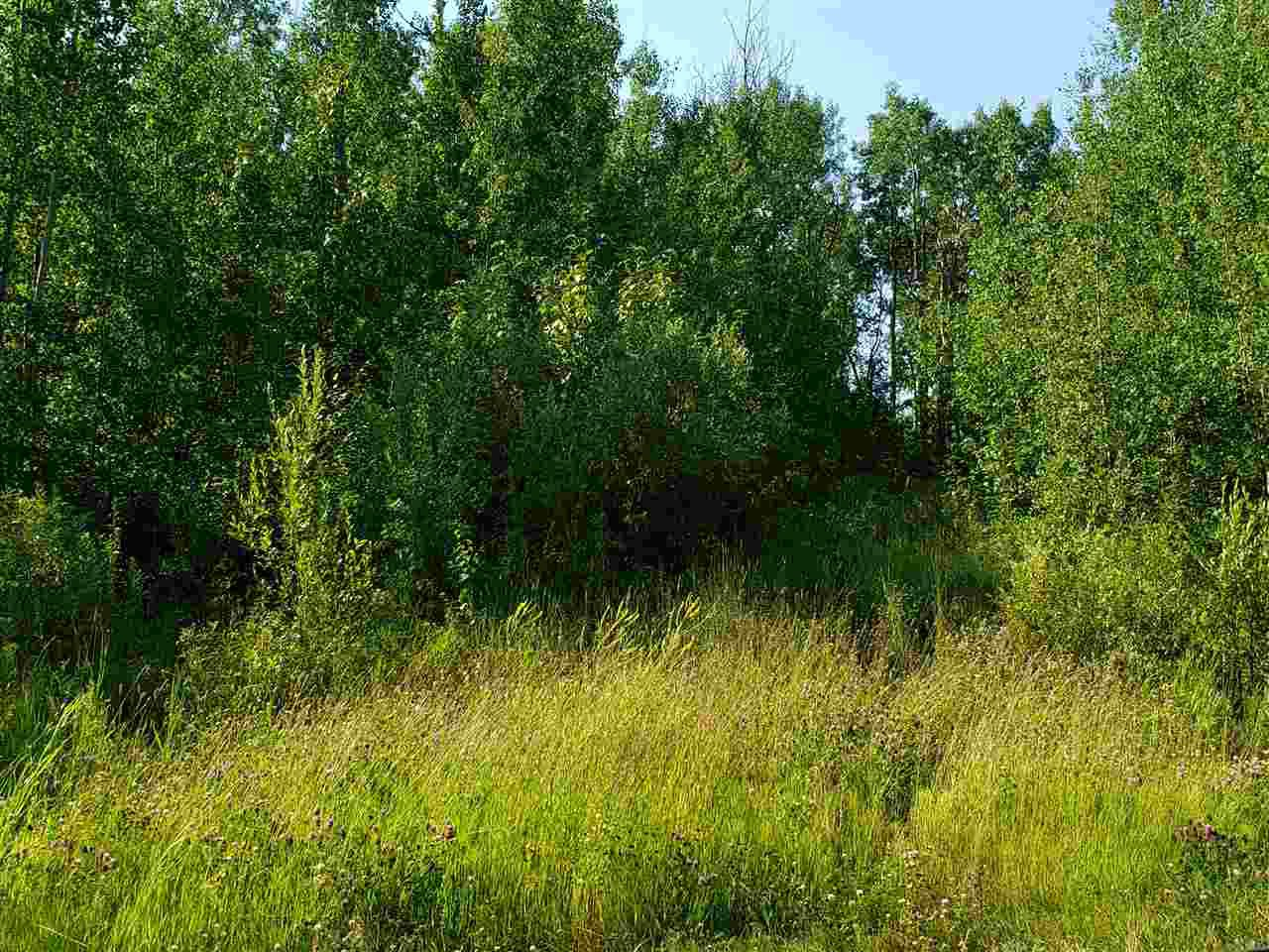 Photo 7: Photos: 22 Morgan Way: Rural Lac Ste. Anne County Rural Land/Vacant Lot for sale : MLS®# E4209833