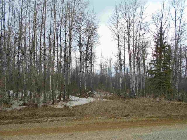 Main Photo: Lot #3 Range Road 72: Rural Brazeau County Rural Land/Vacant Lot for sale : MLS®# E4194237