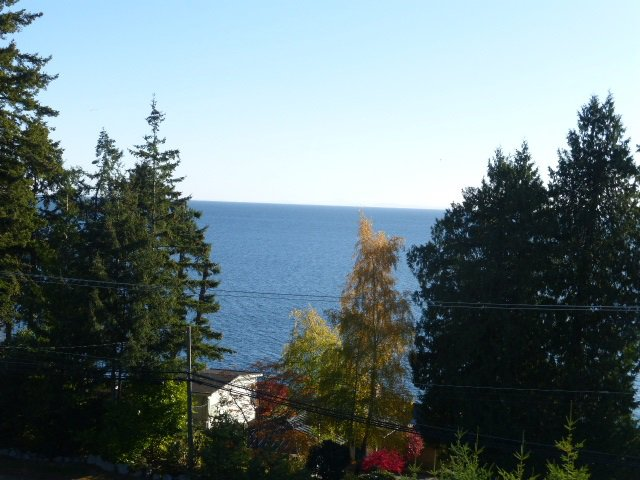 Photo 4: Photos: LOT B BARNACLE Place in Sechelt: Sechelt District Land for sale (Sunshine Coast)  : MLS®# R2515549