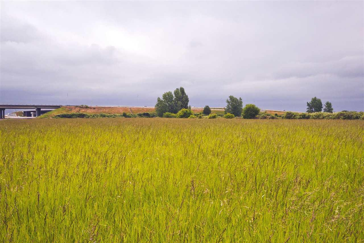 Main Photo: 2990 57B STREET in Delta: Agriculture for sale : MLS®# C8023503