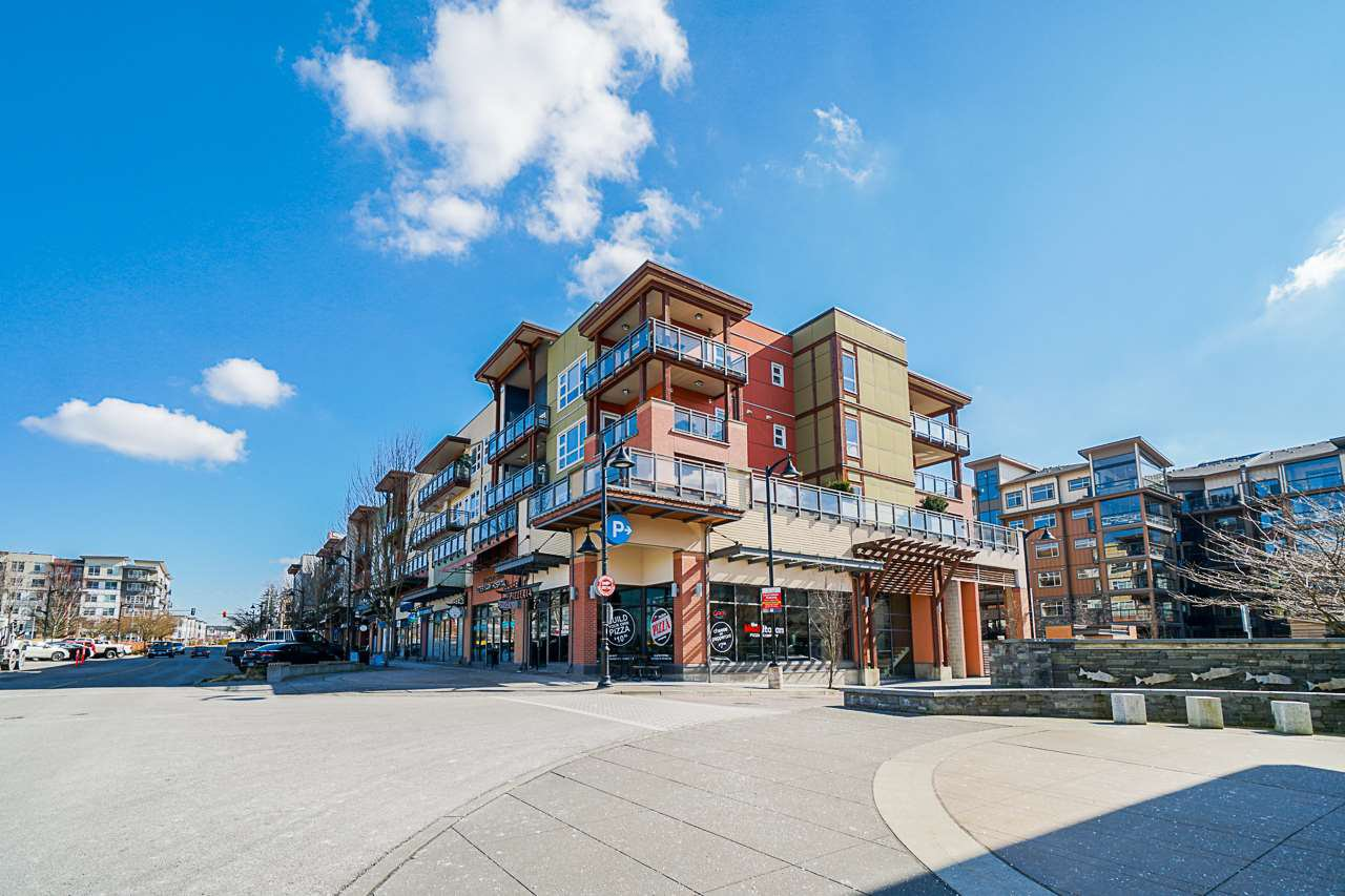 Main Photo: 303 20728 WILLOUGHBY TOWN CENTRE DRIVE in Langley: Willoughby Heights Condo for sale : MLS®# R2443389
