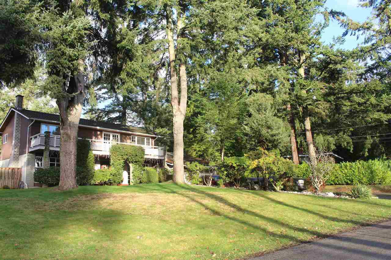 Main Photo: 13719 56A Avenue in Surrey: Panorama Ridge House for sale : MLS®# R2522442