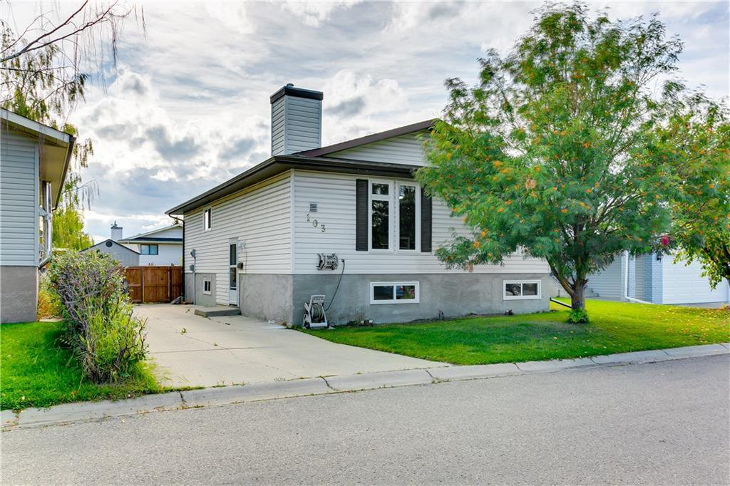 Main Photo: 103 WHITERAM Close NE in Calgary: Whitehorn Detached for sale : MLS®# C4268249