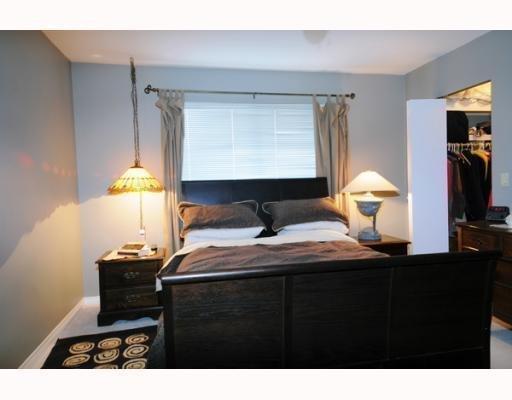 Photo 6: Photos: 11395 HARRISON ST in Maple Ridge: House for sale : MLS®# V744985