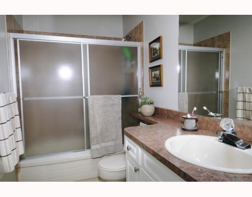 Photo 8: Photos: 11395 HARRISON ST in Maple Ridge: House for sale : MLS®# V744985