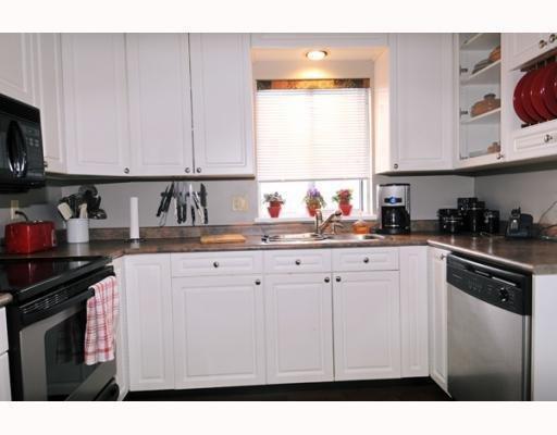 Photo 4: Photos: 11395 HARRISON ST in Maple Ridge: House for sale : MLS®# V744985