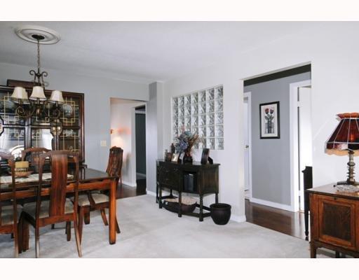 Photo 7: Photos: 11395 HARRISON ST in Maple Ridge: House for sale : MLS®# V744985