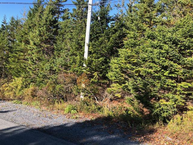 Main Photo: 24 Shannon Road in Brookside: 40-Timberlea, Prospect, St. Margaret`S Bay Vacant Land for sale (Halifax-Dartmouth)  : MLS®# 202022888