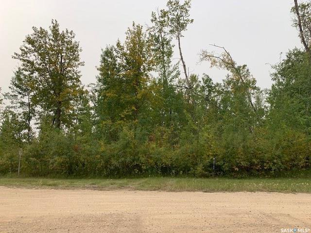 Main Photo: 668 Willow Point Way in St. Brieux: Lot/Land for sale : MLS®# SK824076