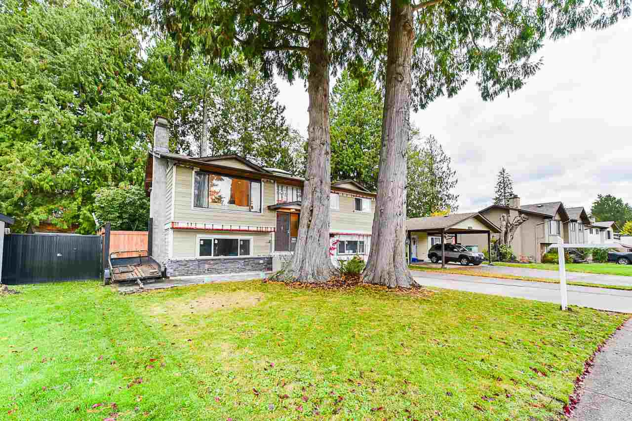 Main Photo: 5011 204TH Street in Langley: Langley City House for sale : MLS®# R2414334