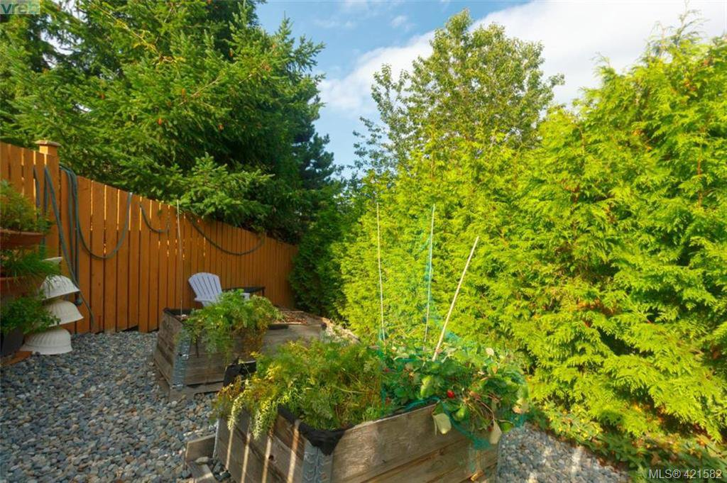 Photo 35: Photos: 6648 Rey Road in VICTORIA: CS Tanner Single Family Detached for sale (Central Saanich)  : MLS®# 421582