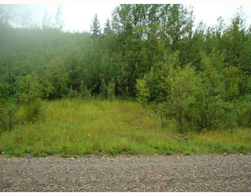 "Main Photo: LOWER CACHE RD in Fort_St._John: Fort St. John - City SW Land for sale in ""LOWER CACHE ROAD"" (Fort St. John (Zone 60))  : MLS®# N186668"