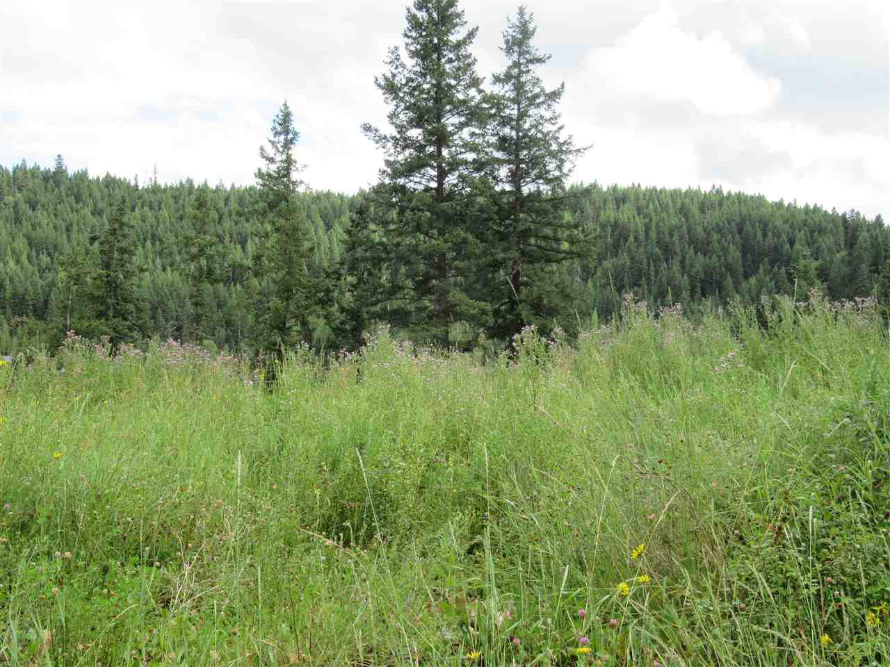 Photo 6: Photos: LOT A FIRDALE Drive in Williams Lake: Williams Lake - Rural North Land for sale (Williams Lake (Zone 27))  : MLS®# R2485053
