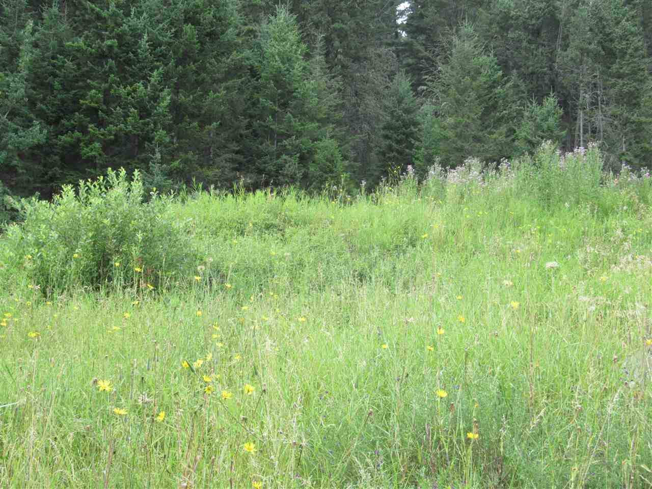 Photo 8: Photos: LOT A FIRDALE Drive in Williams Lake: Williams Lake - Rural North Land for sale (Williams Lake (Zone 27))  : MLS®# R2485053