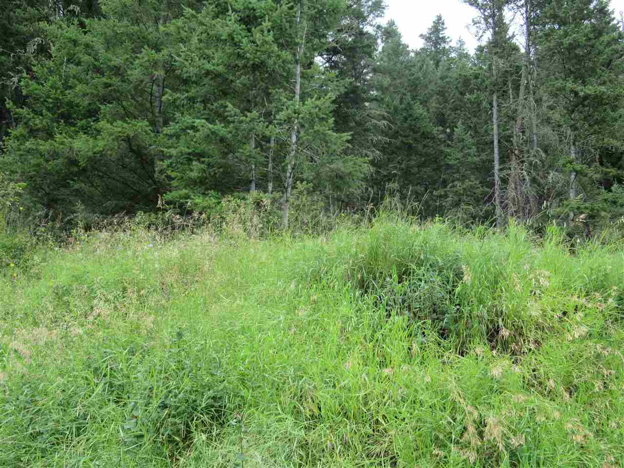 Photo 4: Photos: LOT A FIRDALE Drive in Williams Lake: Williams Lake - Rural North Land for sale (Williams Lake (Zone 27))  : MLS®# R2485053
