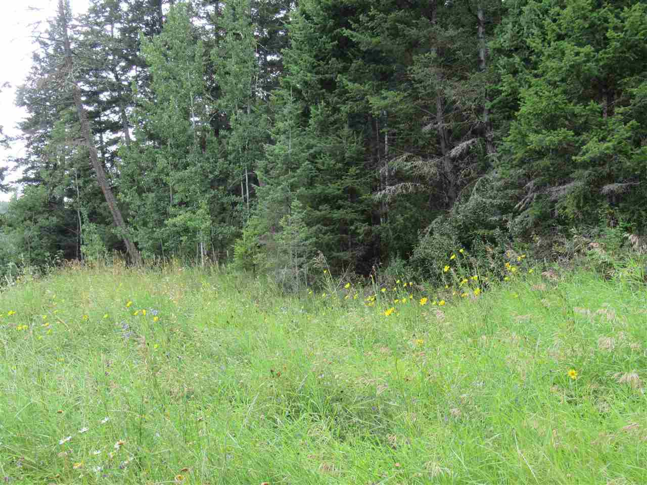Photo 5: Photos: LOT A FIRDALE Drive in Williams Lake: Williams Lake - Rural North Land for sale (Williams Lake (Zone 27))  : MLS®# R2485053