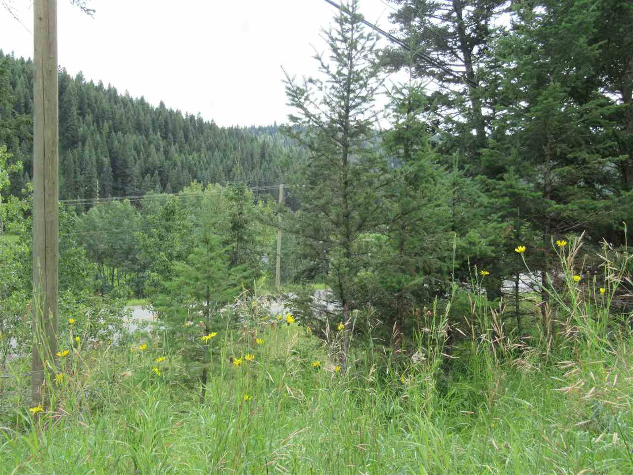 Photo 10: Photos: LOT A FIRDALE Drive in Williams Lake: Williams Lake - Rural North Land for sale (Williams Lake (Zone 27))  : MLS®# R2485053