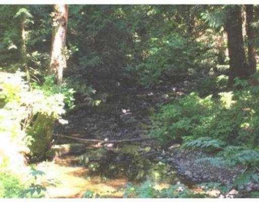 Photo 8: Photos: 27236 BELL AV in Maple Ridge: Whonnock House for sale : MLS®# V564179
