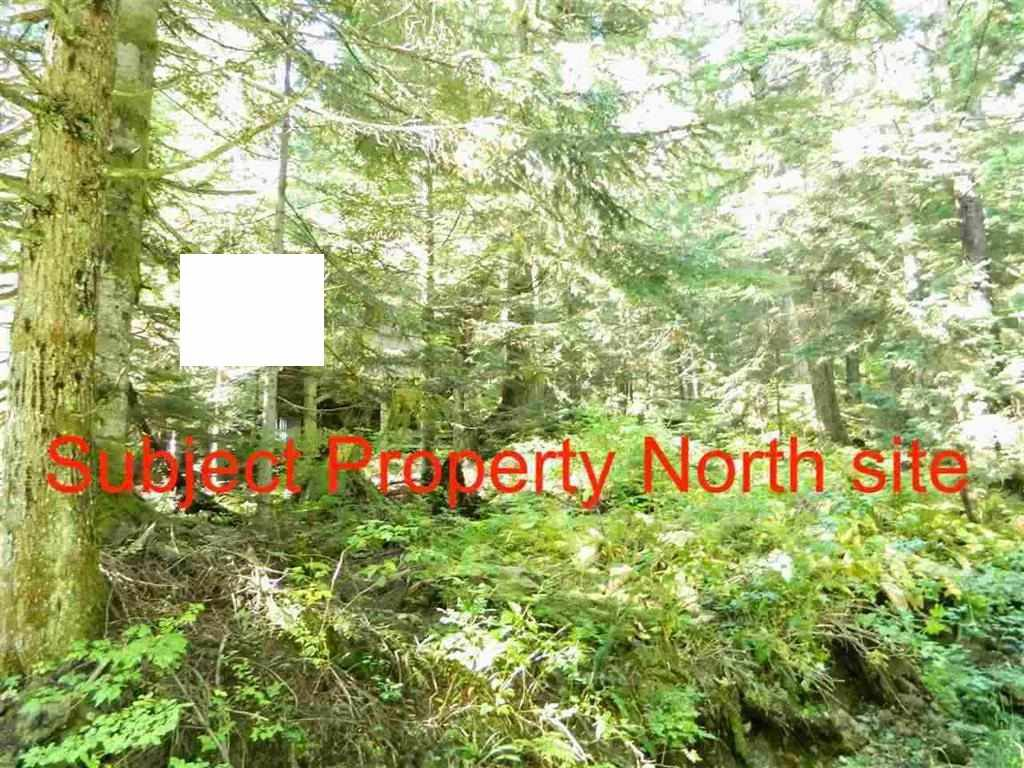 Main Photo: D 1133 HOLLYBURN MTN Terrace in West Vancouver: Cypress Park Estates Land for sale : MLS®# R2427836