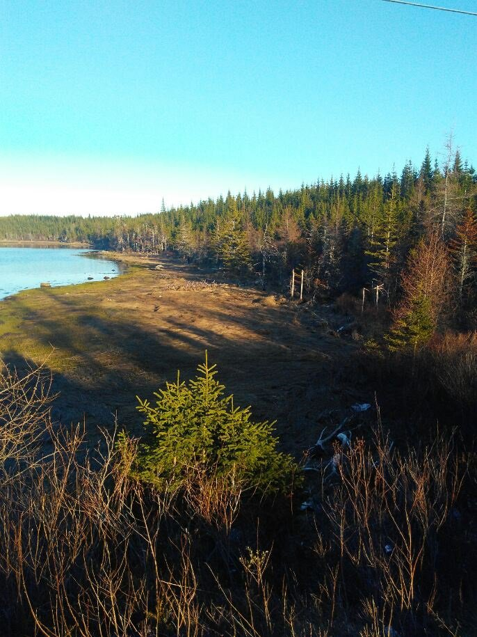 Main Photo: 0 Highway 7 in Spanish Ship Bay: 303-Guysborough County Vacant Land for sale (Highland Region)  : MLS®# 202100404