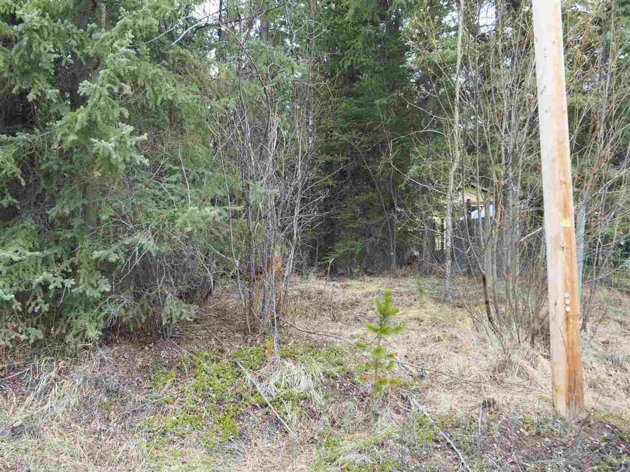 Photo 5: Photos: LOT 216 LUDLOM Road: Deka Lake / Sulphurous / Hathaway Lakes Land for sale (100 Mile House (Zone 10))  : MLS®# R2397846