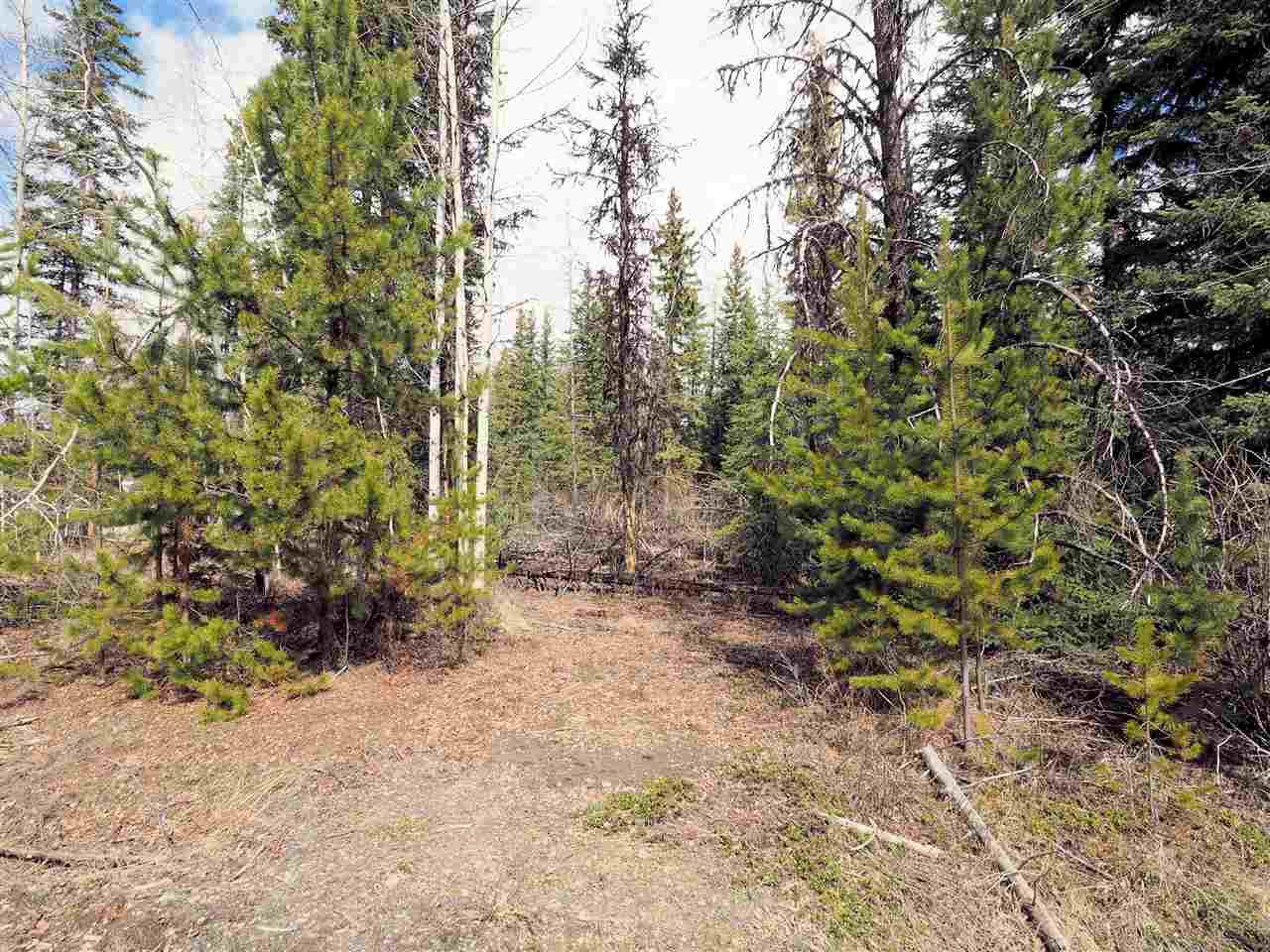 Photo 2: Photos: LOT 216 LUDLOM Road: Deka Lake / Sulphurous / Hathaway Lakes Land for sale (100 Mile House (Zone 10))  : MLS®# R2397846