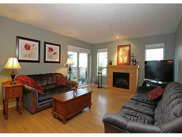 Main Photo: E303 8929 202 STREET in : Walnut Grove Condo for sale : MLS®# F1310934