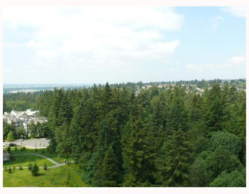 "Photo 19: Photos: 1408 6837 STATION HILL Drive in Burnaby: South Slope Condo for sale in ""THE CLARIDGES - CITY IN THE PARK"" (Burnaby South)  : MLS®# V770790"