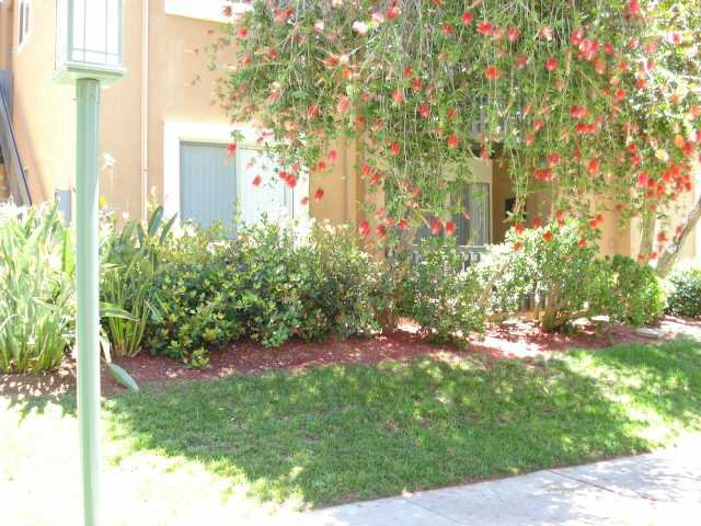 Main Photo: RANCHO BERNARDO Condo for sale : 2 bedrooms : 17189 Bernardo #103 in San Diego
