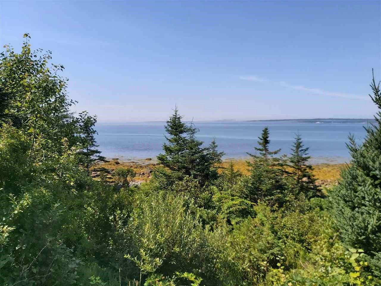 Main Photo: Lot Sandy Point Road in Sandy Point: 407-Shelburne County Vacant Land for sale (South Shore)  : MLS®# 202016060