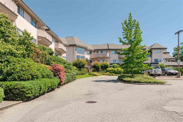 Main Photo: 109 21975 49 in Langley: Murrayville Condo for sale : MLS®# R2399388