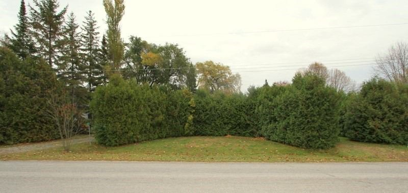 Main Photo: 11 Macpherson Crescent in Kawartha Lakes: Rural Eldon Property for sale : MLS®# X4678685